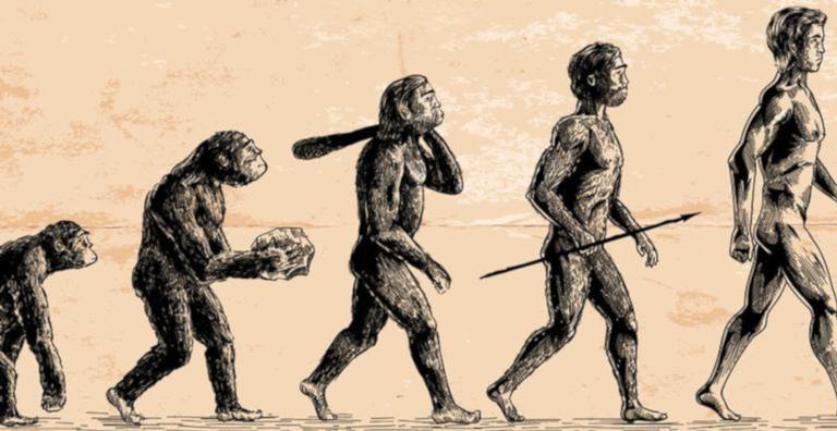 Um longo processo evolutivo aconteceu na Terra até o surgimento do ser humano moderno